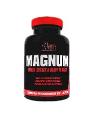 Axcite-Magnum